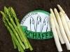 Spargelhof Schäfer Logo mit grünem und weißem Spargel
